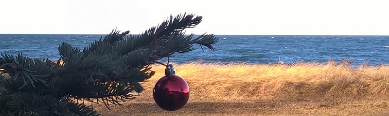 En Attendant Noël - Daniel DeShaime